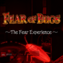 Fear of Bugs: The Fear Experience